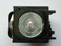 R9842807巴可原裝燈泡