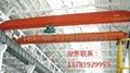 LD Electric Single-Girder Overhead Crane