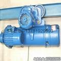 model cd1 electric hoists 2