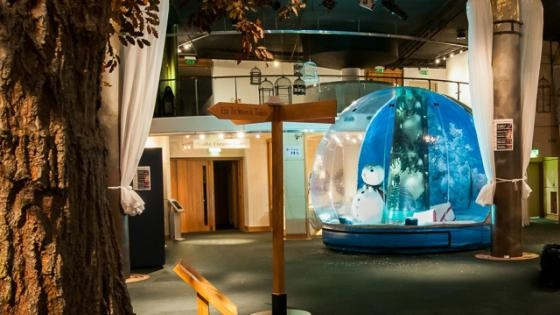 promotional inflatable snow globe