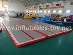Inflatable GYM Matt