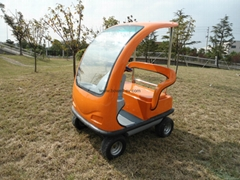 Electric Small Car (Hot Product - 1*)