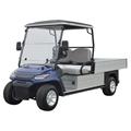 2-seat golf cars