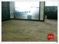 深圳宝安地毯 1