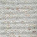 curved pattern shell mosaic