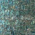 绿色鲍鱼贝壳马赛克卫生间墙面马