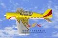 OEM service Rc plane Yak54-50cc 3