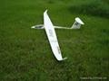 飞机模型 DG1000 3