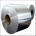 焊管316不鏽鋼帶