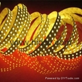 Flexible LED strip SMD5050 1