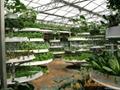 多層種植立體農業 2