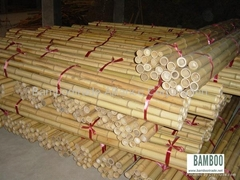 Bamboo poles and bamboo cane