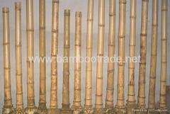 Flute poles