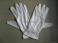 Microfiber gloves 2