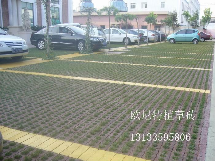 停車場植草磚 2