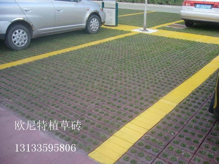 停車場植草磚 3