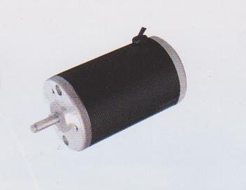 ZDN系列直流稀土電動機 1