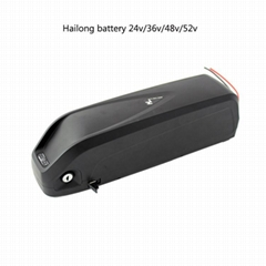 36v 20ah hailong e bike battery pack 36v
