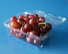 Fruit packaging container plastic
