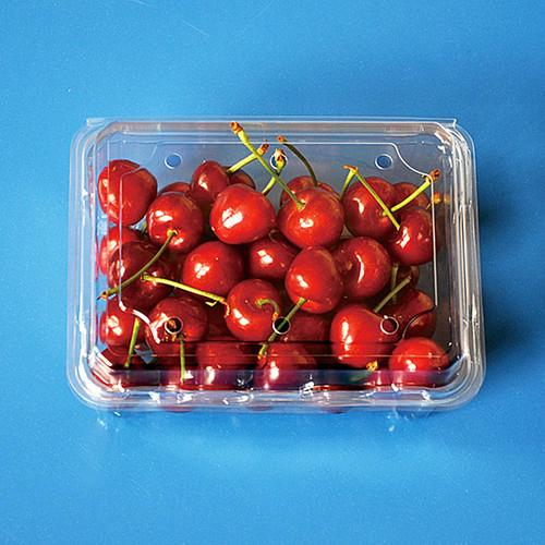 Fruit packaging container plastic packaging container for blueberry 5