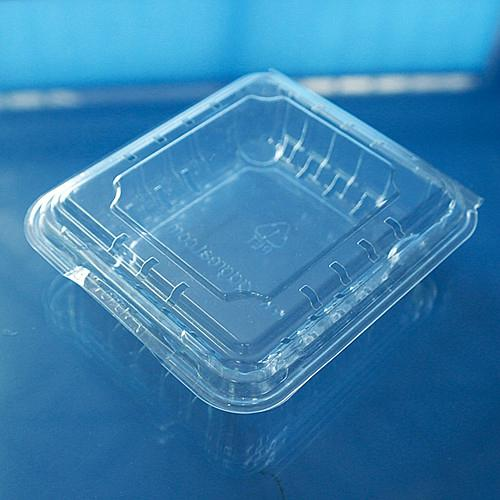 clamshells blister  plastic blueberry packaging container 125 gram 2