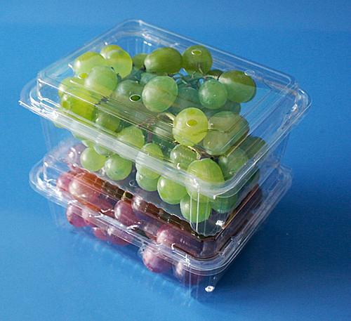 manufactory plastic fruit packaging container 250 gram strawberry packaging box  2