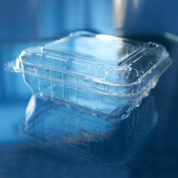 plastic blueberry packaging container 125 gram 5