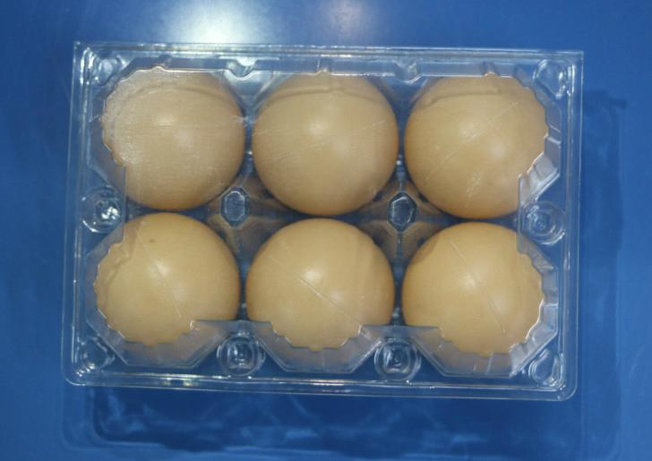 plastic egg tray for 6 holes 1