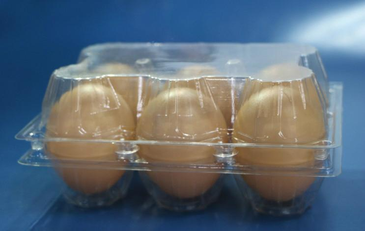 plastic egg tray for 6 holes 3