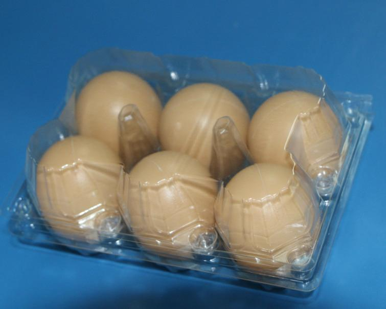 plastic egg tray for 6 holes 4