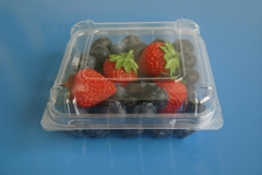blister clamshell fruit packaging tray