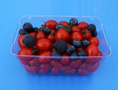 disposable clamshells blister fruit
