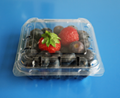 plastic blueberry packaging container