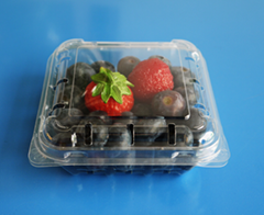 plastic blueberry packaging container 125 gram