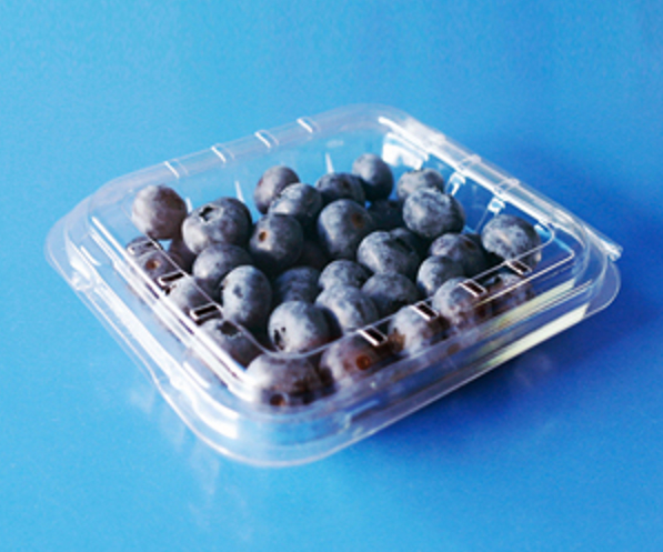 clamshells blister disposable  plastic blueberry packaging container 125 gramFDA 1