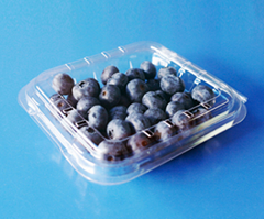 clamshells blister  plastic blueberry packaging container 125 gram