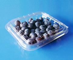 clamshells blister  plastic blueberry