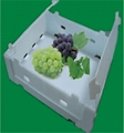 Plastic corrugated fruit packaging box