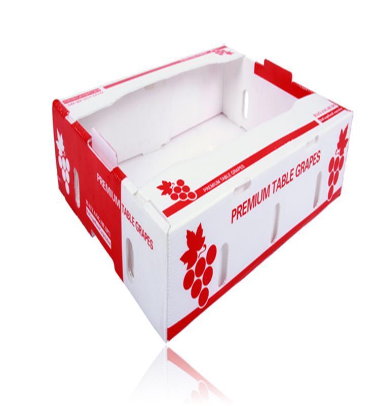 Plastic corrugated fruit packaging box  3