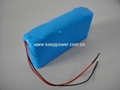 8S2P 29.6V Li ion 18650 Battery Pack 8S2P 4.4Ah