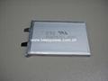 Sony Li Polymer 404261 US404261 A10T 1300mAh