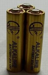 奇力丰27A 12V电池