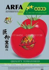 番茄种子巨粉宝石