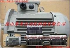 Italian ELECTRO ADDA motor