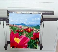 AP-202 油性耐水针织旗布(背膜)(Solvent & Eco-Solvent & Latex & UV)
