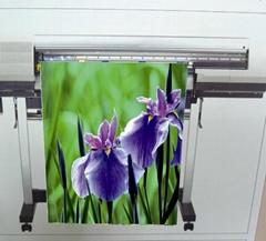 AP-6108-N 油性雾面耐水单透绢布(Solvent & Eco-Solvent & Latex & UV)