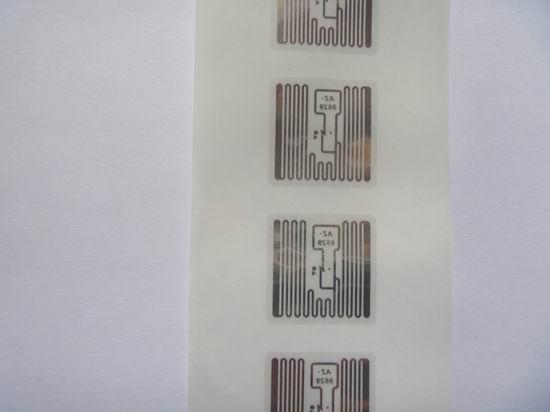 AZ-9629濕inlay 2