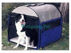 Pet Carrier (DWP1007)