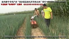 滄州耕牛大蔥收穫機