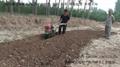 果園開溝施肥